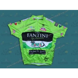 2013 Farnese Vini-Selle Fluorescent Cycling Jersey